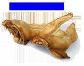 Hirschohren
